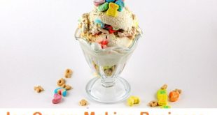 आइसक्रीम बनाने का व्यवसाय