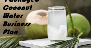 Packaged Coconut Water Business Plan