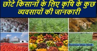 Top Farmin Business ideas for Farmers