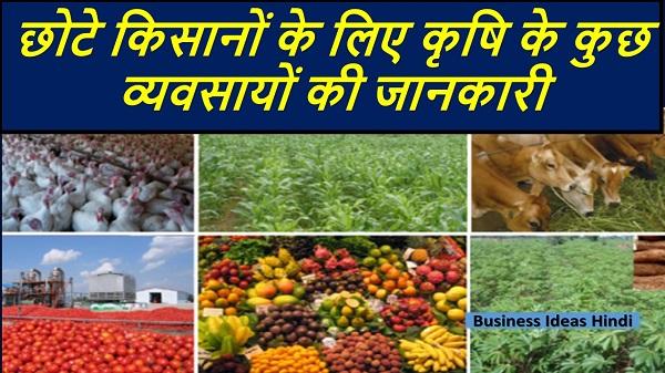 Top Farmin Business ideas for Farmers