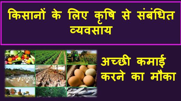 agricultue business ideas