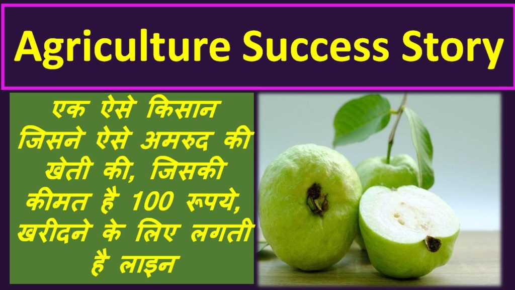 agriculture success story