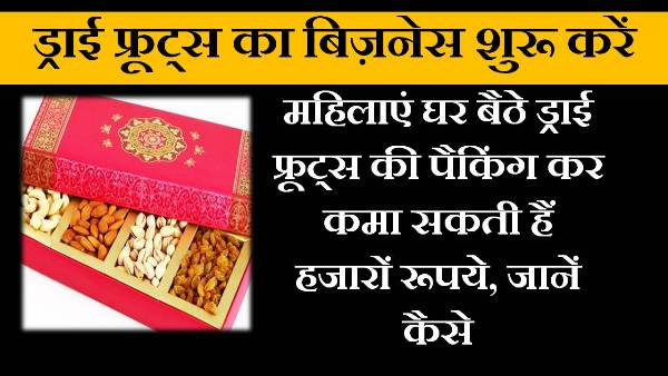 dry fruit business in hindi